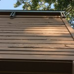 naper-settlement-commercial-outdoor-museum-painting-before- - 1