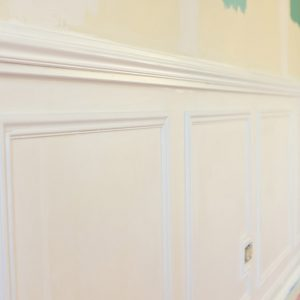 naperville-residential-interior-home-painting-modaff-BEFORE - 13